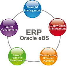 Erp Oracle Ebs Evotech Solution